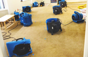 drying a basement