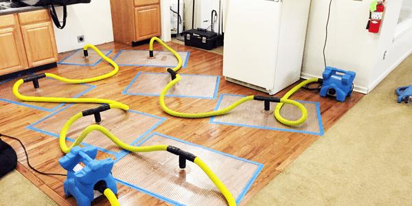 Dry Hardwood Floors